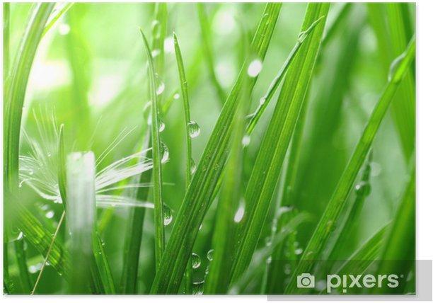 Plakat Trawy - Krajobraz wiejski