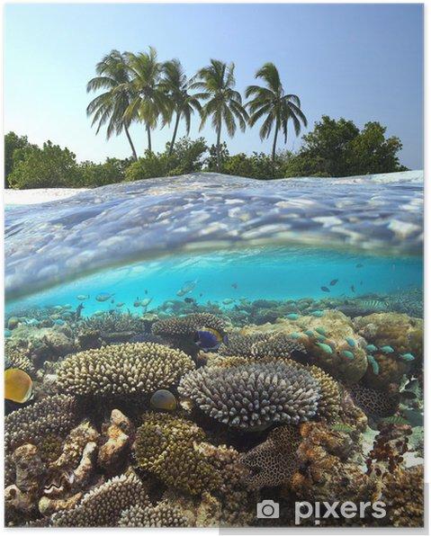 Plakát Tropical Reef - Maledivy - Korálové útesy