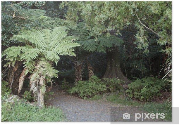 Plakát Tropické džungle - Témata
