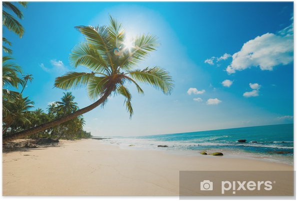 Plakat Tropikalna plaża w słońcu - Malediwy