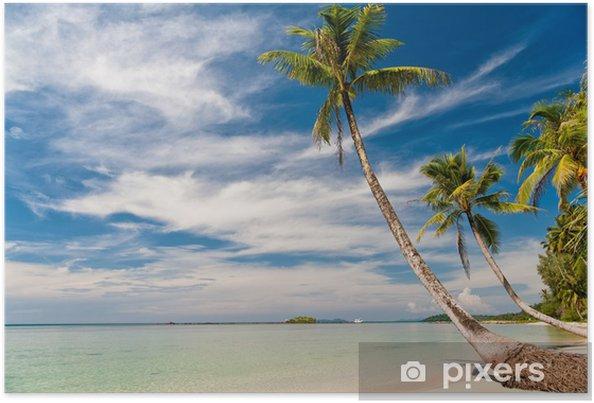 Plakat Tropikalna plaża z palmami i błękitne niebo - Wakacje