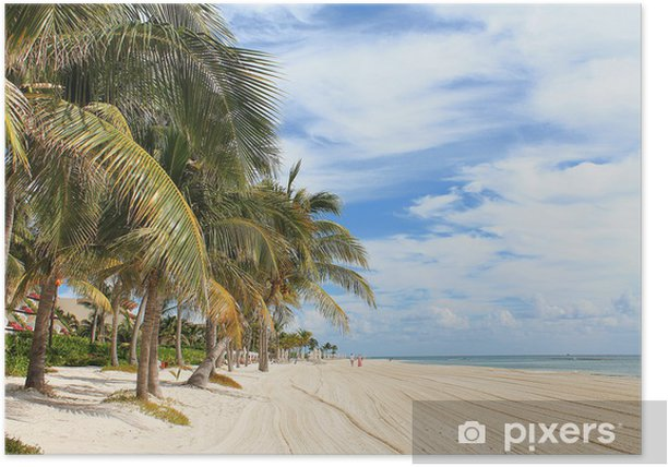 Plakat Tropikalna plaża z palmami - Palmy