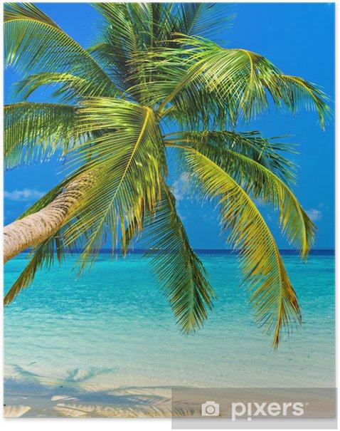 Plakat Tropikalna plaża -