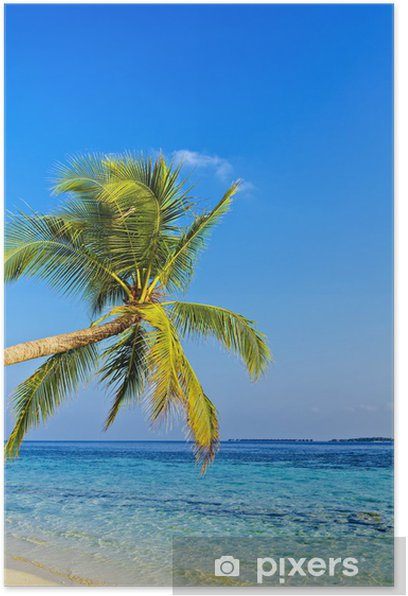 Plakat Tropikalna plaża - Hawaje