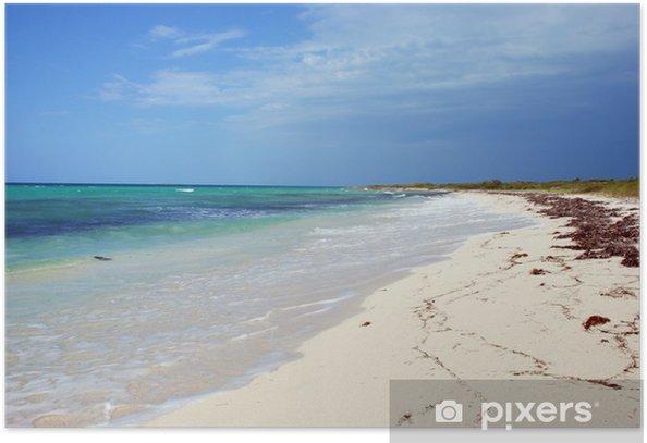 Plakat Tropikalna plaża - Woda