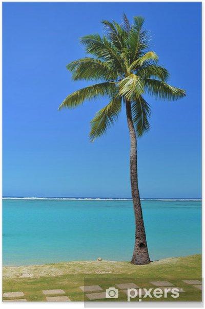 Plakat Tropikalne palmy - Wakacje