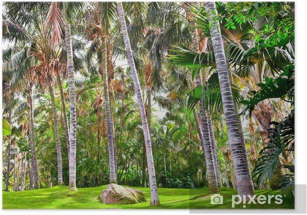 Plakat Tropikalny ogród palmowy w pięknym raju - Europa