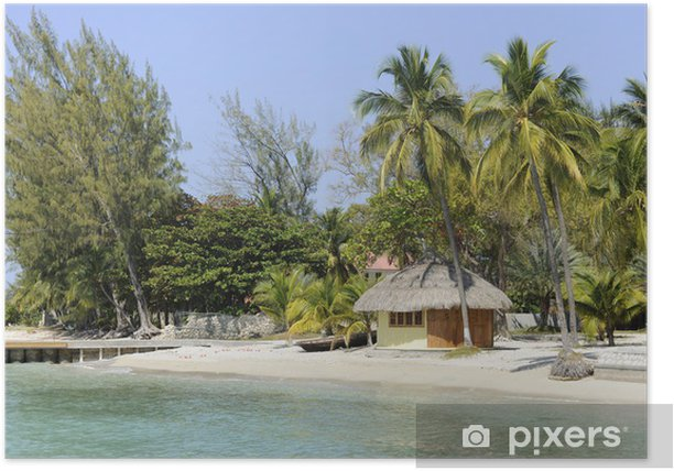 Plakat Tropikalny raj - Ameryka