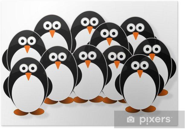 Plakát Tučňáci - Ptáci