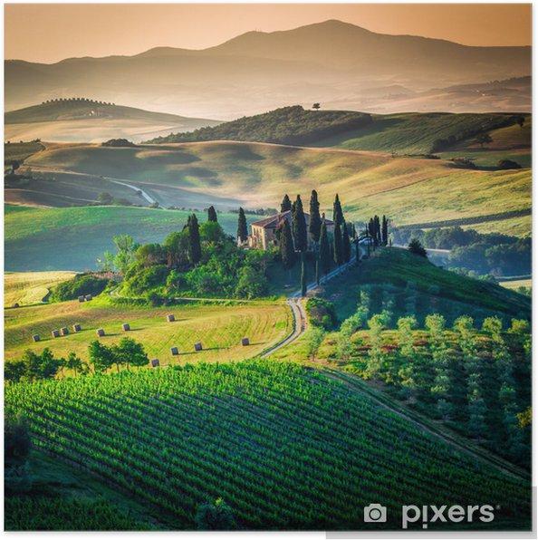 Plakat Tuscan country - Łąki, pola i trawy