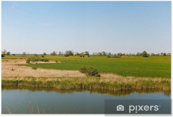 Plakat Typowy holenderski krajobraz - Krajobraz wiejski