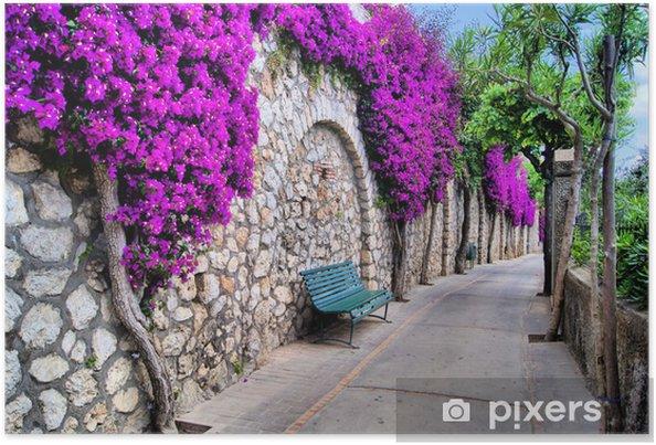 Plakat Uliczka pod starym murem z fioletowymi kwiatami - Europa