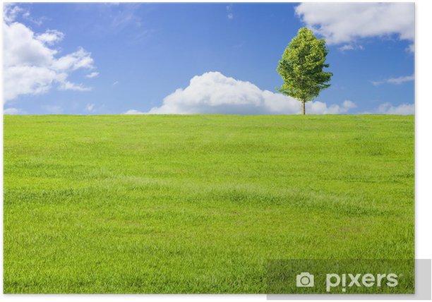 Plakat Użytki zielone i błękitne niebo i drzewa - Pory roku