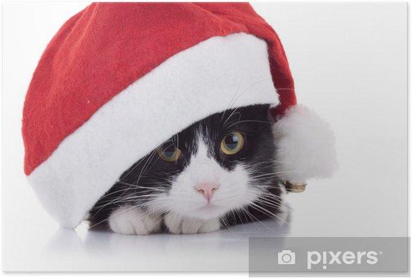 Plakát Vánoce kočka - Savci