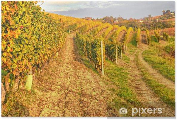 Plakat Vigna - Krajobraz wiejski