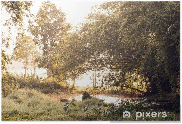 Plakát Vlhká půda scéna na slunci úsvitu - Voda