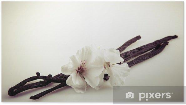 Plakat Wanilia i kwiat - Rośliny