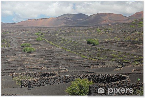 Plakát Weinanbaugebiet La Geria, Lanzarote, Španělsko - Evropa