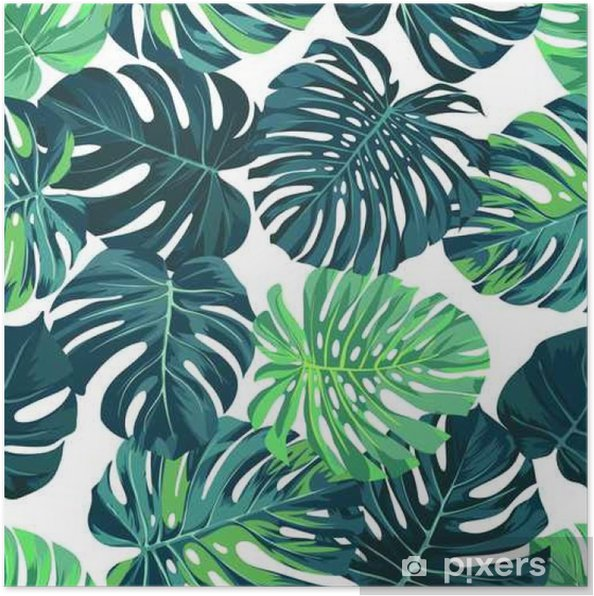 Plakat Wektor bez szwu deseń z palmy zielony monstera pozostawia na ciemnym tle. Tropikalna tkanina letnia. - Zasoby graficzne