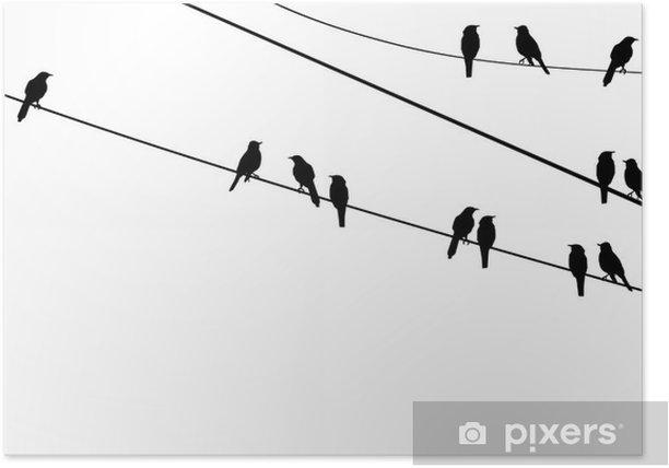 Plakat Wektor ptaki na drucie - Naklejki na ścianę