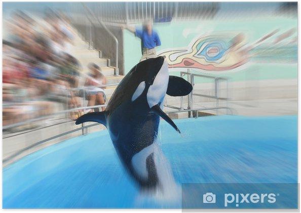 Plakát Whale jumping - Vodní a mořský život