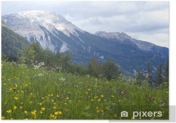 Plakat Widok krajobraz z trawy i gór w backg - Góry