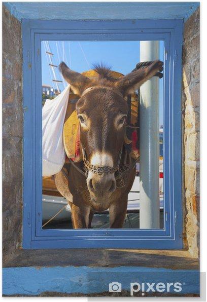 Plakat Widok osła pozowanie rzucił ramę okna w Santorini Islan - Miasta europejskie