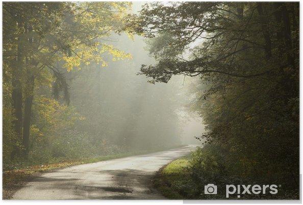 Plakat Wiejskie drogi przez mglisty las jesienią na wschód słońca - Lasy