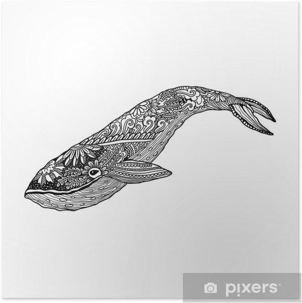 Plakat Wieloryb Wektor Zentangle Druku Kolorystyka Strony Dorosłych Ręcznie Rysowane Artystycznie Ozdobnych Wzorzyste Ilustracji Kolekcja