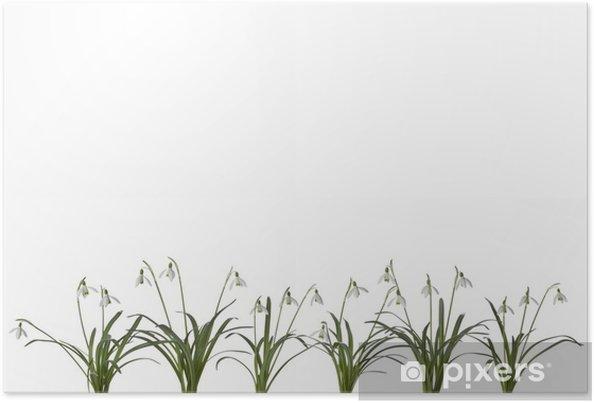 Plakat Wiersz Przebiśnieg Kwiaty