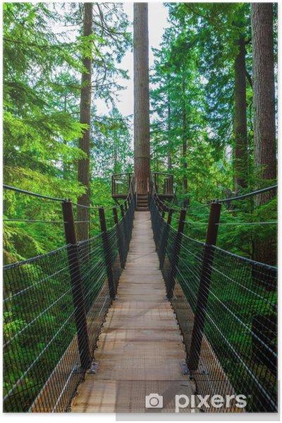Plakat Wierzchołek Most wiszący w Capilano Park, British Columbia - Środowisko