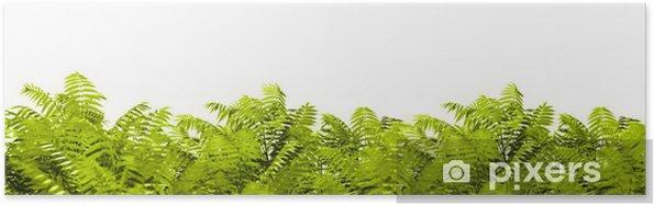 Plakat Wildnis - Rośliny