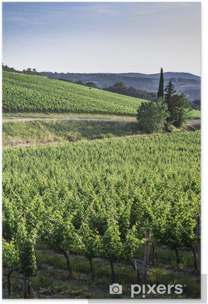 Plakat Winnice w Toskanii - Tematy