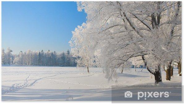 Plakat Winter park w śniegu - Tematy