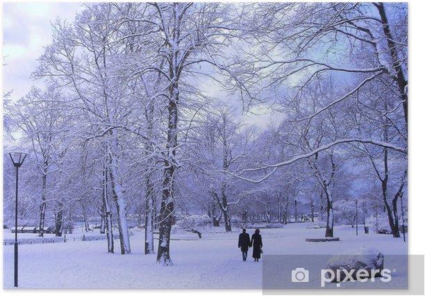 Plakat Winter park - Pory roku