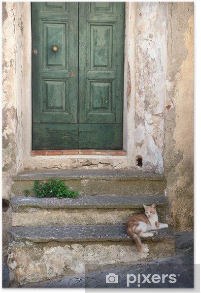 Plakat Włoski stary dom i kota - Ssaki