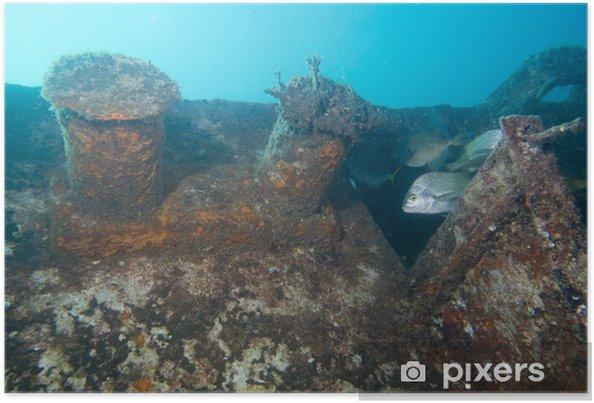 Plakat Wrak statku - Pod wodą