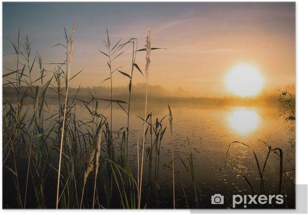 Plakat Wschód słońca - Natura i dzicz