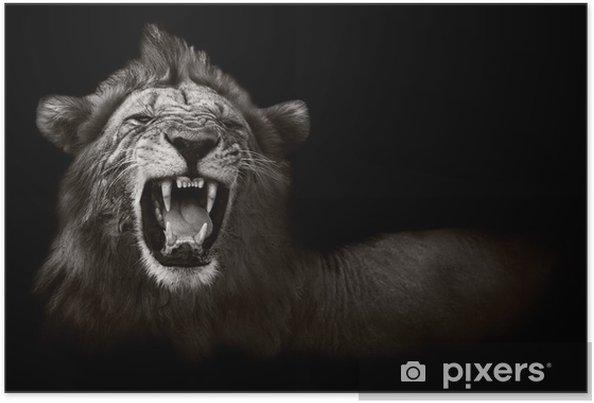 Plakat Wyświetlanie niebezpiecznych zębów lwa -