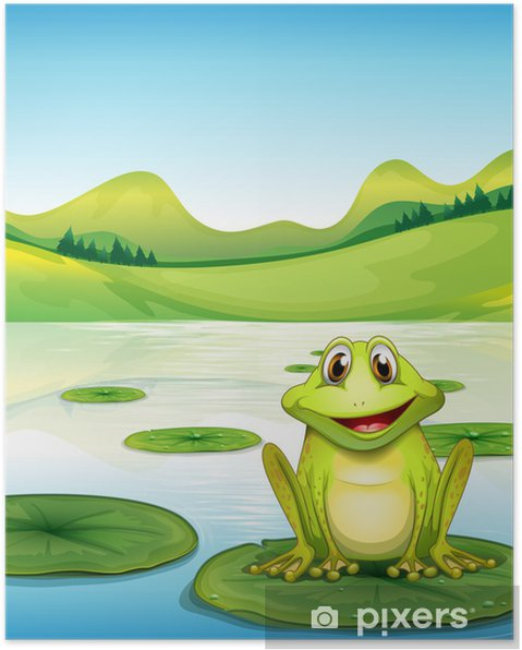 Plakat Żaba nad lilii wodnej w stawie - Inne Inne