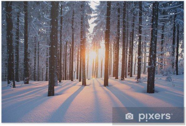 Plakat Zachód słońca w zimowym lesie -