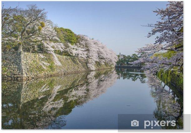 Plakat Zamek zewnętrzny Fosa w Hikone, Japonia - Azja