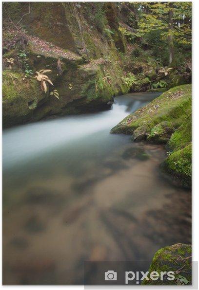 Plakat Zamknij się strumienia lasu - Lasy