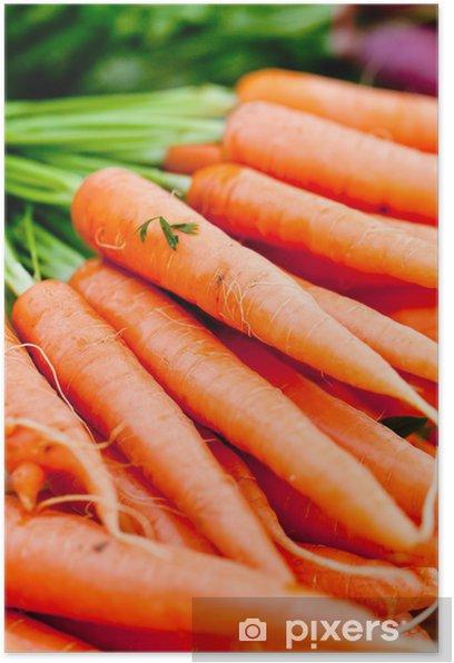Plakat Zbliżenie świeże ostre marchew marchewka - Tematy
