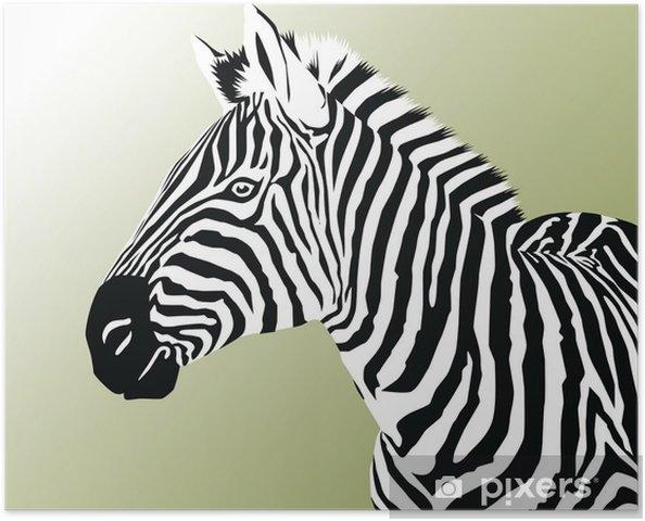 Plakat Zebra - Ssaki