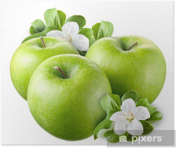Plakát Zelená jablka s listy a květy na bílém pozadí - Ovoce