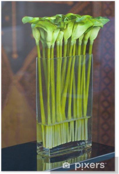 Plakát Zelené Callas ve váze - Květiny
