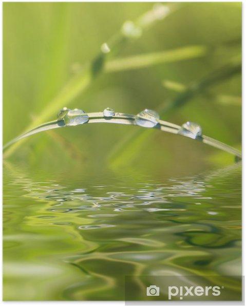 Plakát Zelené přírody - Roční období
