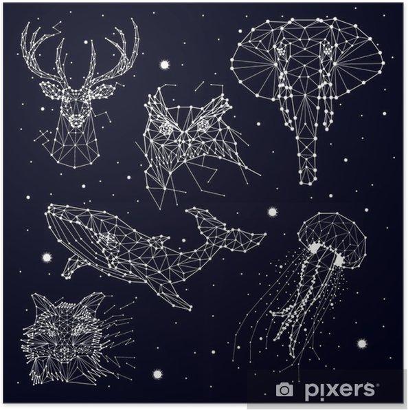 Plakat Zestaw konstelacji, słonia, Sowa, jelenie, wieloryby, meduzy, Fox, gwiazda, grafiki wektorowej - Zwierzęta