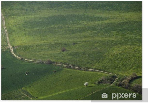 Plakat Zielony aksamit - Krajobraz wiejski